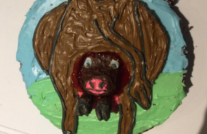 This mum fulfilled her sons one birthday request and the results are GROSS