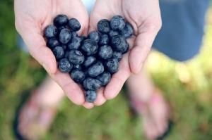 Delicioius: 7 everyday foods that pack a seriously nutritious punch